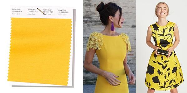 رنگ سال 2019 پنتون : رنگ بهاری شماره 7 : زرد / طلایی صنوبری Aspen Gold