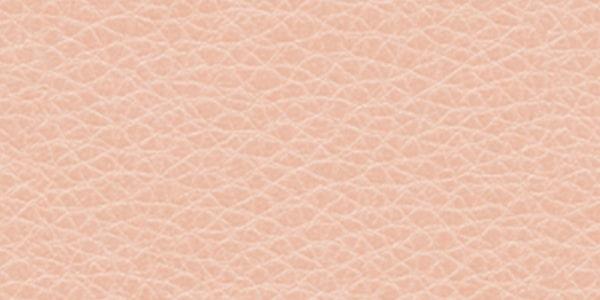 پوست نرمال - ظاهر و ویژگی ها