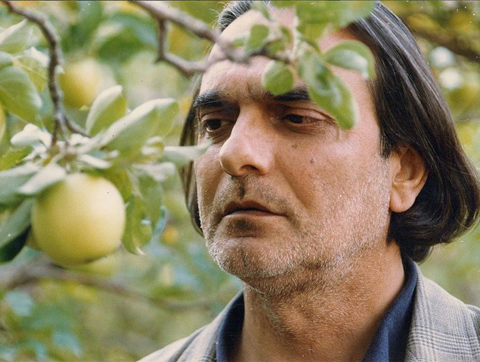 فیلم ایرانی درخت گلابی