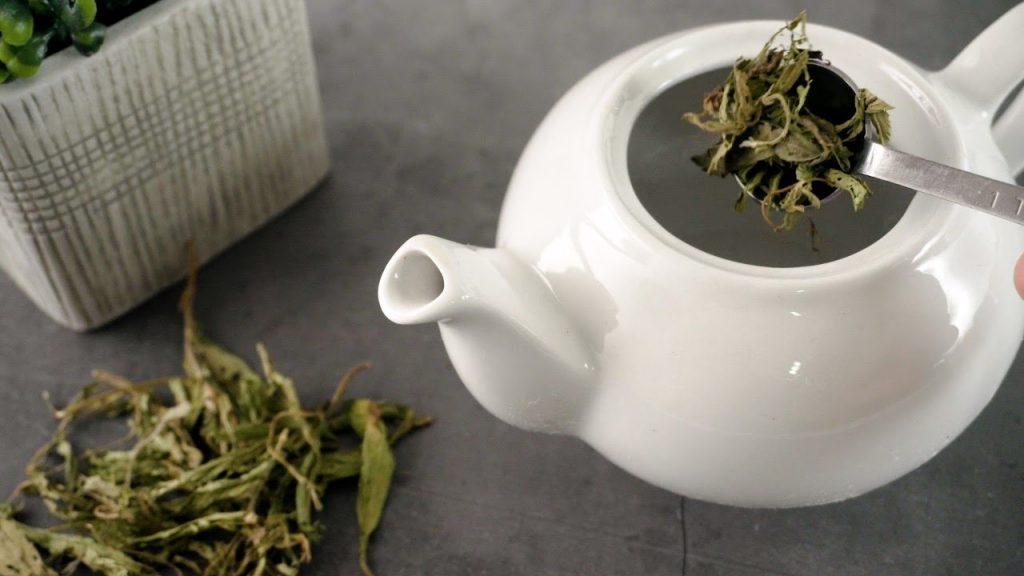 چای سبز چگونه دم کنیم