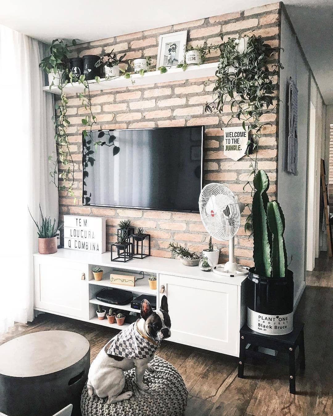 دکور تلویزیون با گل و گیاه